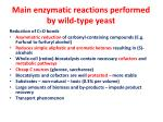 main enzymatic reactions performed by wild type yeast
