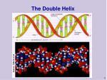 the double helix