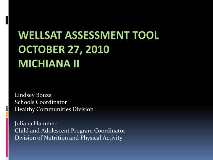 wellsat assessment tool october 27 2010 michiana ii n.