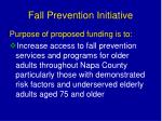 fall prevention initiative