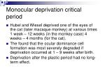 monocular deprivation critical period