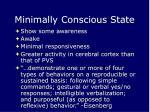 minimally conscious state