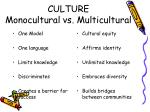 culture monocultural vs multicultural
