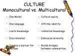 culture monocultural vs multicultural
