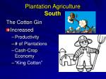 plantation agriculture south
