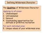 defining wilderness character