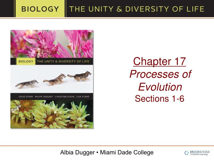 chapter 17 processes of evolution sections 1 6 n.