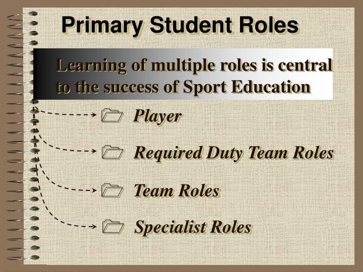 Primary Student Roles