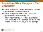 reporting other changes two categories