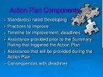 action plan components