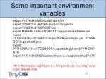 some important environment variables