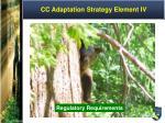 cc adaptation strategy element iv