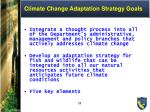 climate change adaptation strategy goals