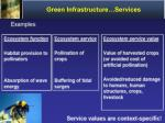 green infrastructure services