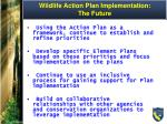 wildlife action plan implementation the future