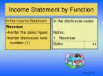 income statement by function1