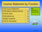 income statement by function10