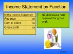income statement by function3
