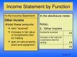 income statement by function4