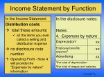 income statement by function5