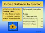 income statement by function9