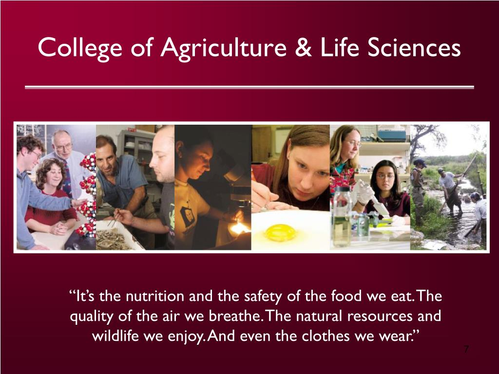 College of Agriculture & Life Sciences