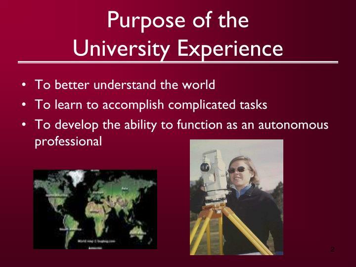 Purpose of the university experience