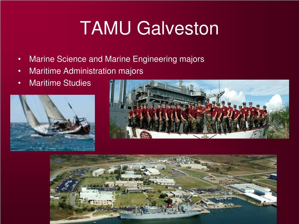 TAMU Galveston