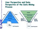 user perspective and data perspective of the data mining process