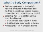 what is body composition