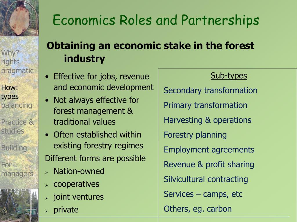 Economics Roles and Partnerships