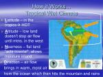 how it works tropical wet climate