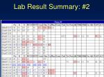 lab result summary 2