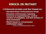 knock in mutant2