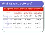 what frame size are you