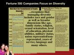 fortune 500 companies focus on diversity
