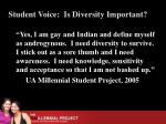 student voice is diversity important