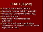 punch dupont
