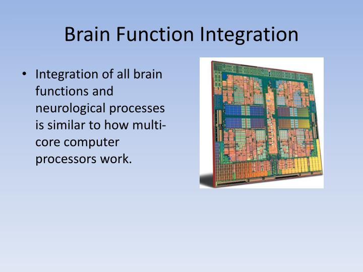 Brain Function Integration