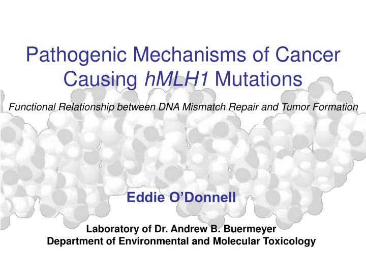 relationship between mutations and cancer