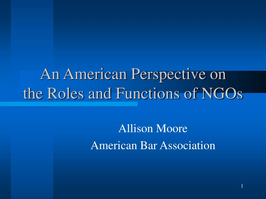 an american perspective on the roles and functions of ngos l.