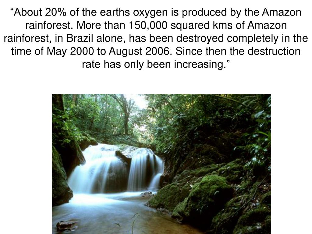 """About 20% of the earths oxygen is produced by the Amazon rainforest. More than 150,000 squared kms of Amazon rainforest, in Brazil alone, has been destroyed completely in the time of May 2000 to August 2006. Since then the destruction rate has only been increasing."""