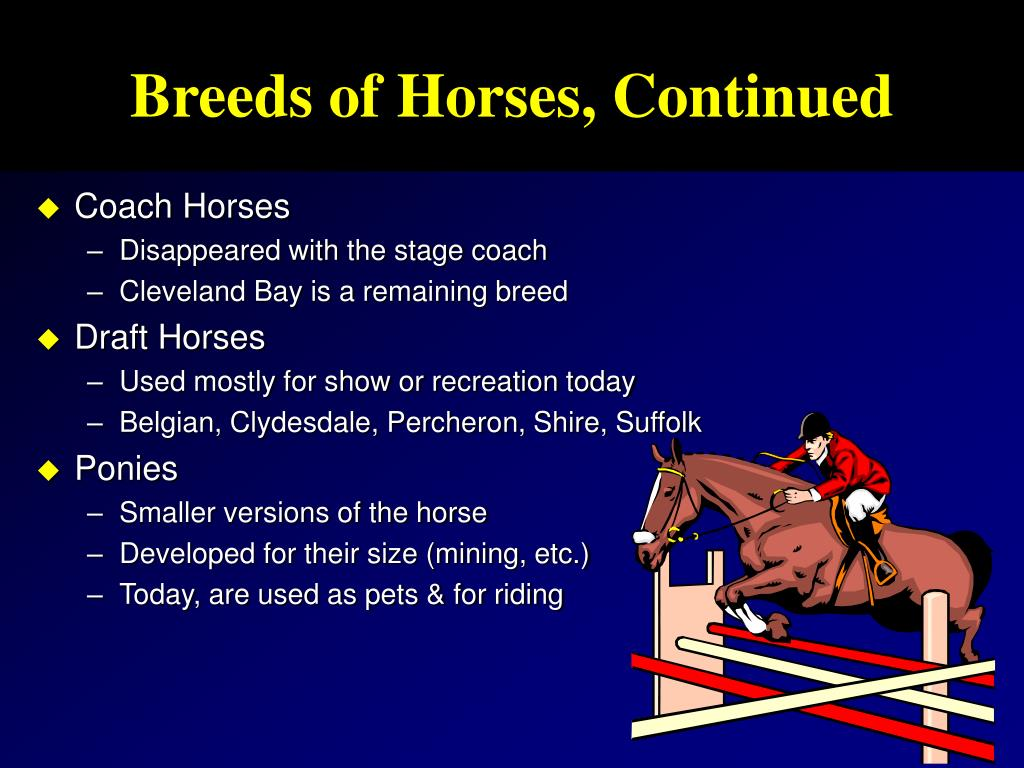 Breeds of Horses, Continued