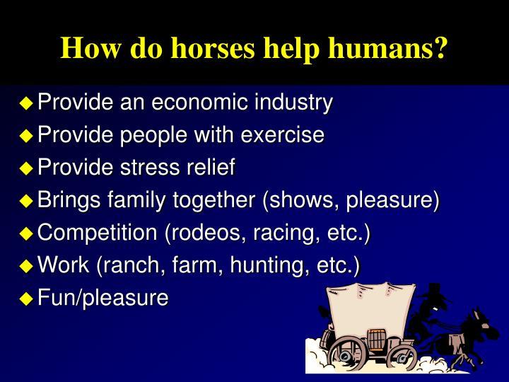 How do horses help humans