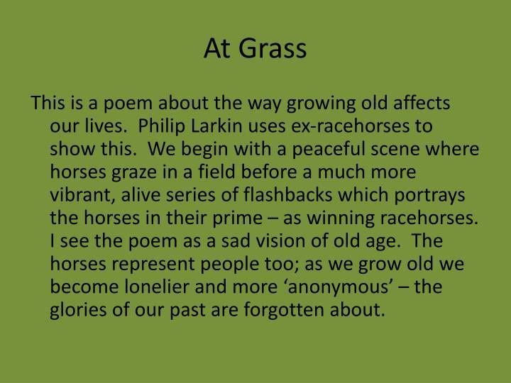 At grass
