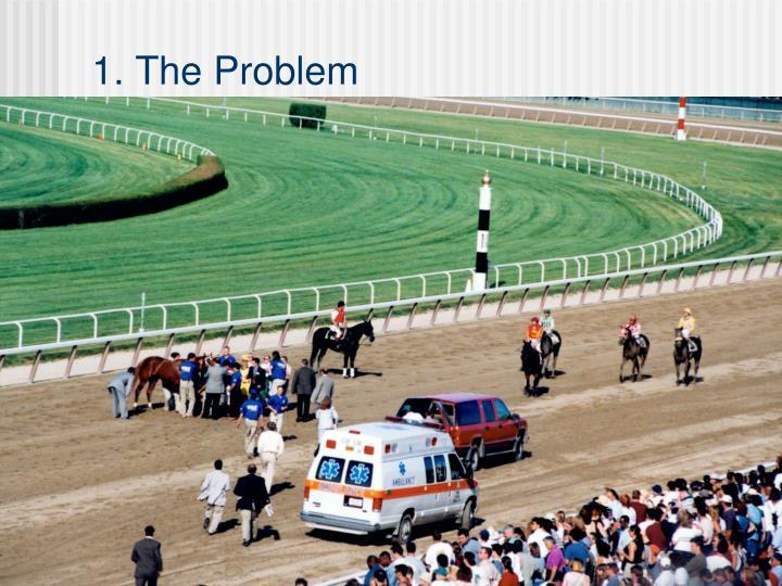 1 the problem