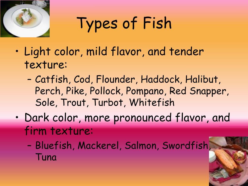 Types of Fish