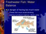 freshwater fish water balance