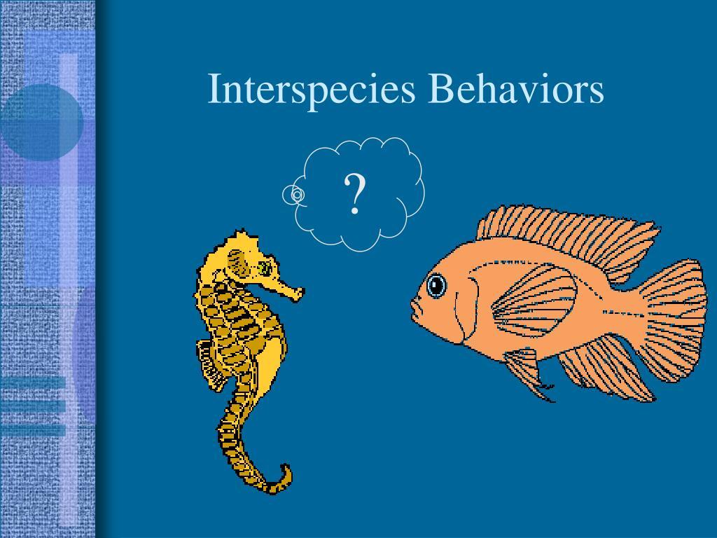 Interspecies Behaviors