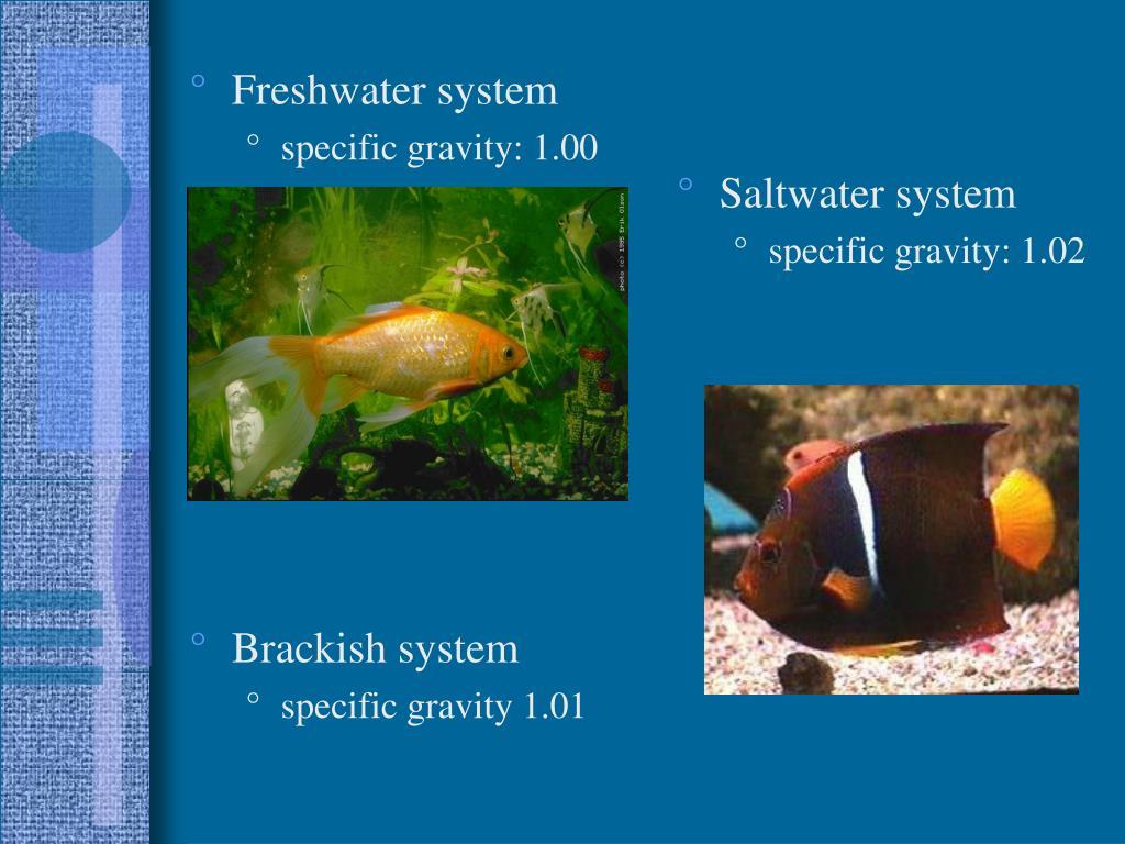Freshwater system